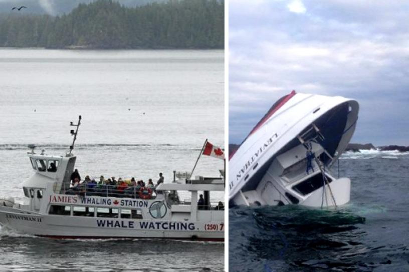 Naufragio-de-barco-ballenas-canada