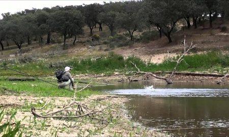 pescar en badajoz